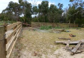 Snake Island - Fencing (3)
