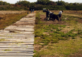 Snake Island - Track Maintenance (1)