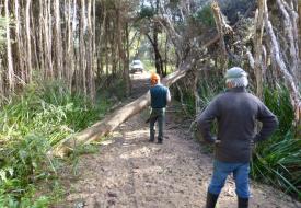 Snake Island - Track Maintenance (2)